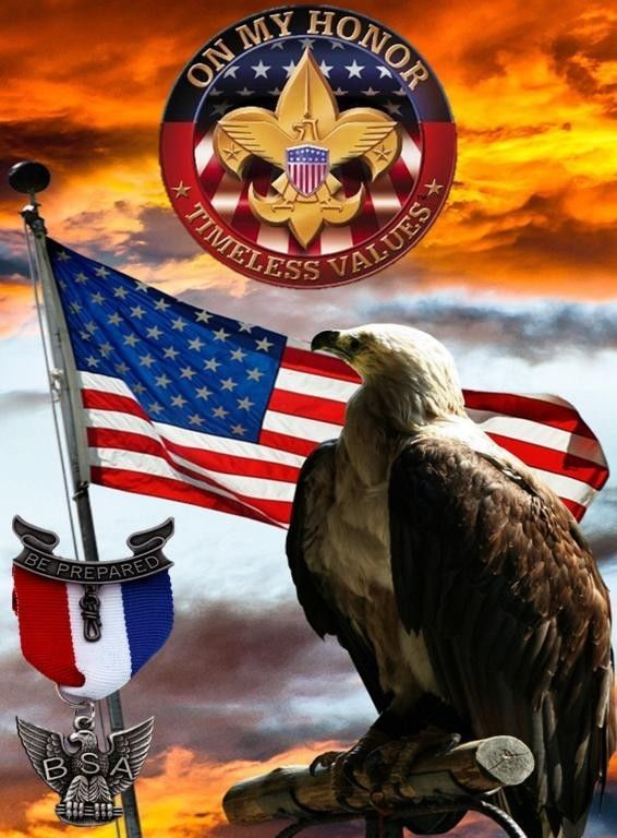 1000+ images about Will s Eagle Court of Honor on ...