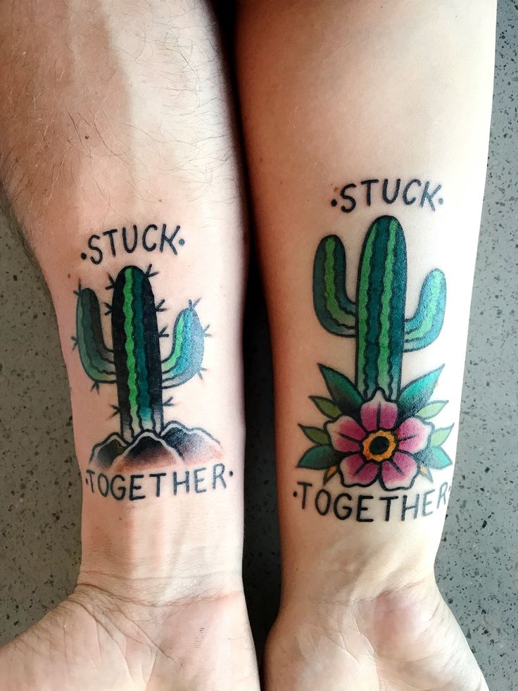 American traditional cactus tattoo #americantraditional #traditionaltattoo #cactustattoo