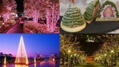 あなたのクリスマスを投稿してポイントをGET  今日は待ちに待ったクリスマス(o)  イルミネーションにクリスマスケーキクリスマスコンサートなどクリスマスは話題がたくさん  彼氏や彼女とここ行ったよここのお店のクリスマスケーキは最高()こんな素敵なイベントに参加しました  そんなあなたのおすすめ情報をRELEASEに投稿するだけでポイントをGETできちゃう(o)  しかも登録利用は完全無料  さあ今すぐ登録しよう  http://ift.tt/1Y9427N   #ソーシャルメディア #宣伝 #PR #無料 #クリスマス #イベント #グルメ #イルミネーション