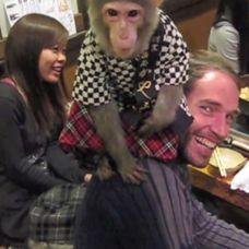 [Video] Pelayan Di Restoran Ini Adalah Seekor Monyet http://www.perutgendut.com/videos/view/pelayan-di-restoran-ini-adalah-seekor-monyet/203 #Food #Kuliner #Video