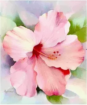 'Pink Hibiscus' by Betty Denton