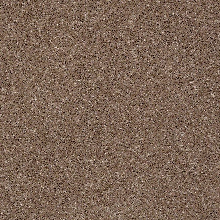 Peaceful Moments Ii S Color Cozy Home 12 Ft Carpet