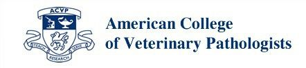 Providing Diagnostic Pathology Services to Veterinarians Since 2003 Daniel E. Dunmore, DVM, Diplomate ACVP Privately Owned and Operated Diagnostic Pathology …