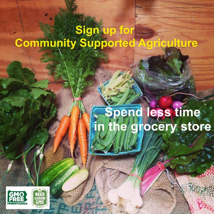 It's that time of year again to sign up for Community Supported Agriculture in the Commonwealth of PA. What does this mean? In my house-hold it means a weekly box full of wonderful color and the rich smell of the dirt. I open up the CSA box as if ripping open a package at Christmas…