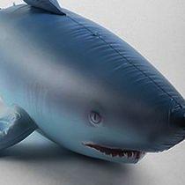Giant Inflatable Shark