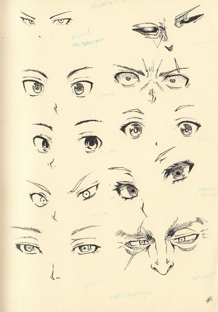 Sketch 20: Eyes and Nose by Shiryu37 on DeviantArt