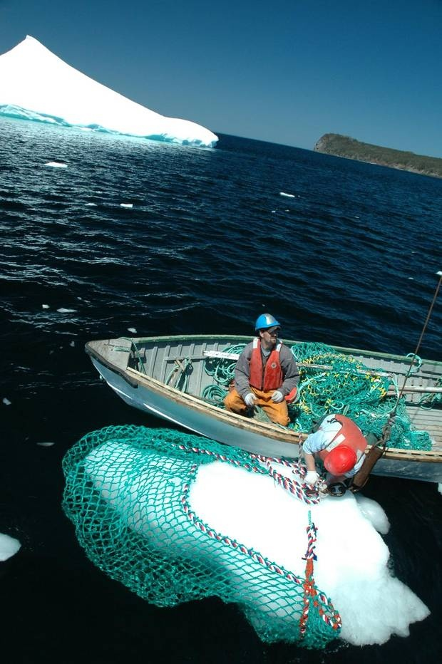 Iceberg harvesters use nets to collect chunks of ice off the coast of Newfoundland . (Iceberg Vodka)