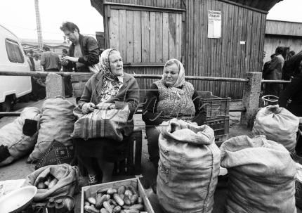 FORUM Polska Agencja Fotografów / Agencja fotograficzna, Forum Fotografów, Reportaże, Reporter, Zdjęcia, Fotografia, Bank zdjęć, Sesje fotograficzne, Fotografia korporacyjna, Profesjonalna fotografia, Profesjonalna sesja zdjęciowa, Firmowa sesja zdjęciowa