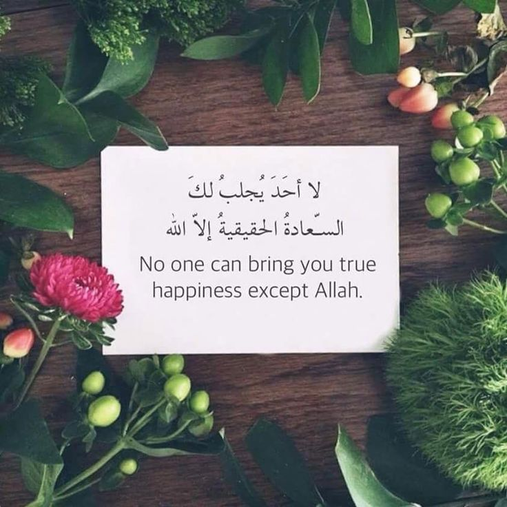 No one can bring you true happiness except Allah.
