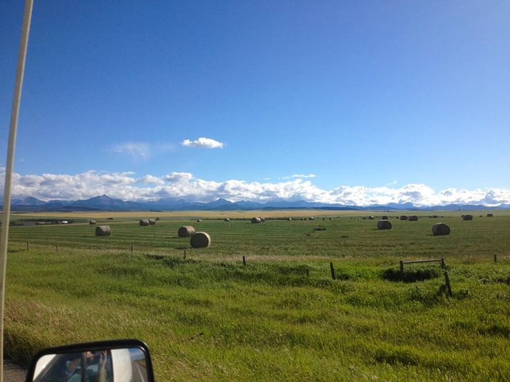 On the road with Mayhemingways (Part 4): Alberta. By Josh Fewings. Josh's final report features Twin Butte General Store, The Calgary Stampede, Recordland, and more Peterborough connections.