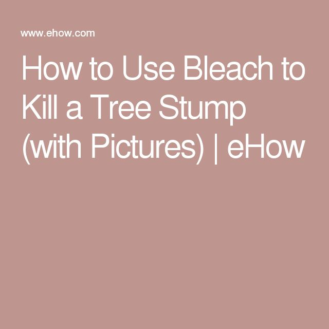 How to Use Bleach to Kill a Tree Stump (with Pictures) | eHow