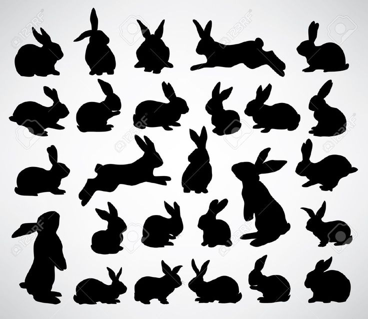 Collection Of Rabbit Silhouettes Royalty Free Cliparts, Vectors, And Stock Illustration. Image 11562854.