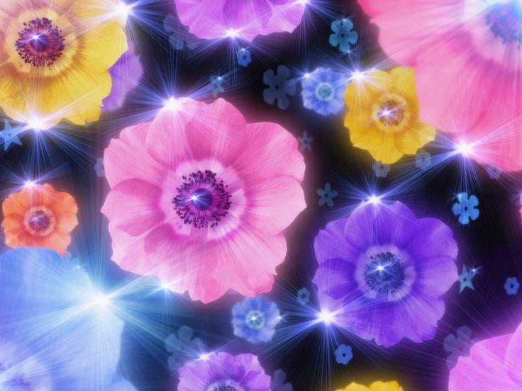 82 besten Art Background  Wallpaper Flowers Bilder auf
