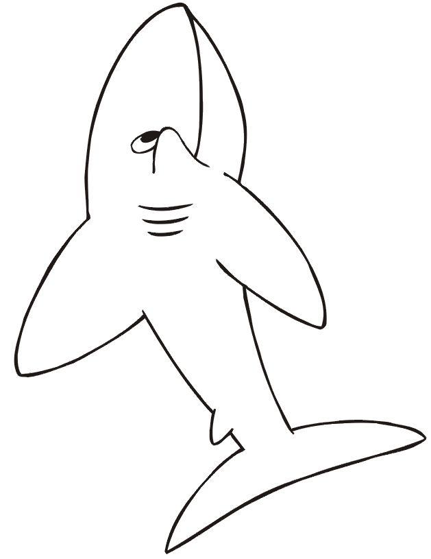 printable shark Shark Coloring