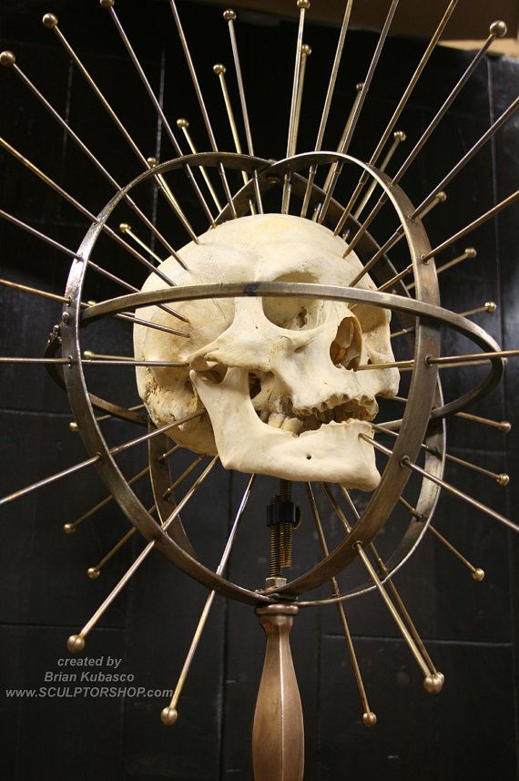 Craniometer -an instrument for measuring the human cranium or skull - vintage medical device