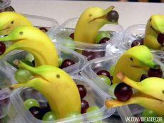 Suministro de fruta creativa