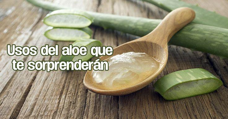 ¡Aloe vera contra la piel grasa, el estreñimiento, las llagas, para adelgazar...!