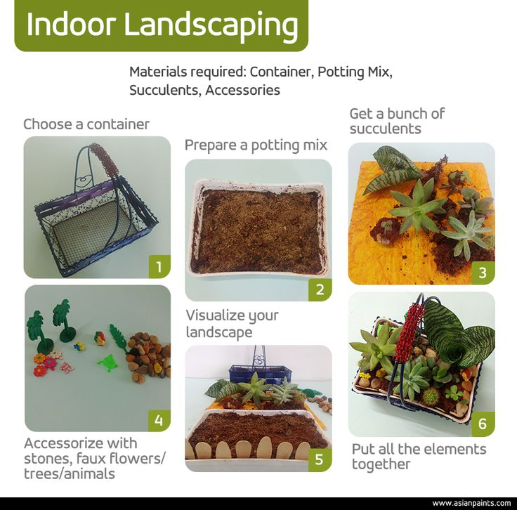 Love #succulents? Bring it inside your #home and no, there is no big hassle involved! Infact, it is easier than you thought. Give it a try and tell us how it turns out. Happy indoor #landscaping!