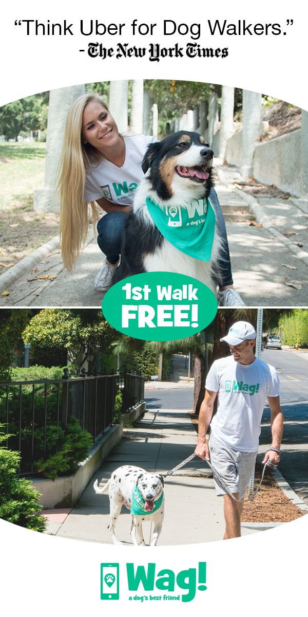 First Walk is always free!