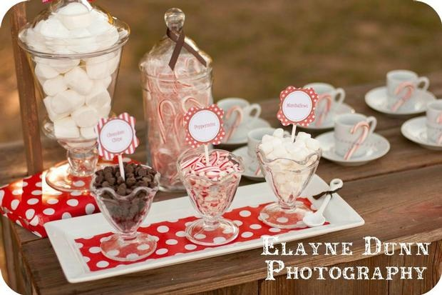 I love the idea of a hot cocoa bar for any winter party, could be Christmas, Valentines day, or a winter birthday.