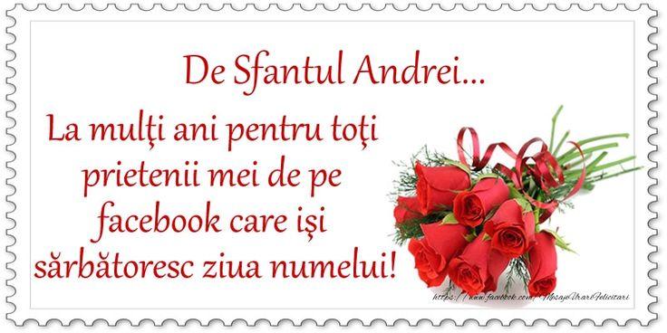 De Sfantul Andrei ... La multi ani pentru toti prietenii mei de pe facebook care isi sarbatoresc ziua numelui!