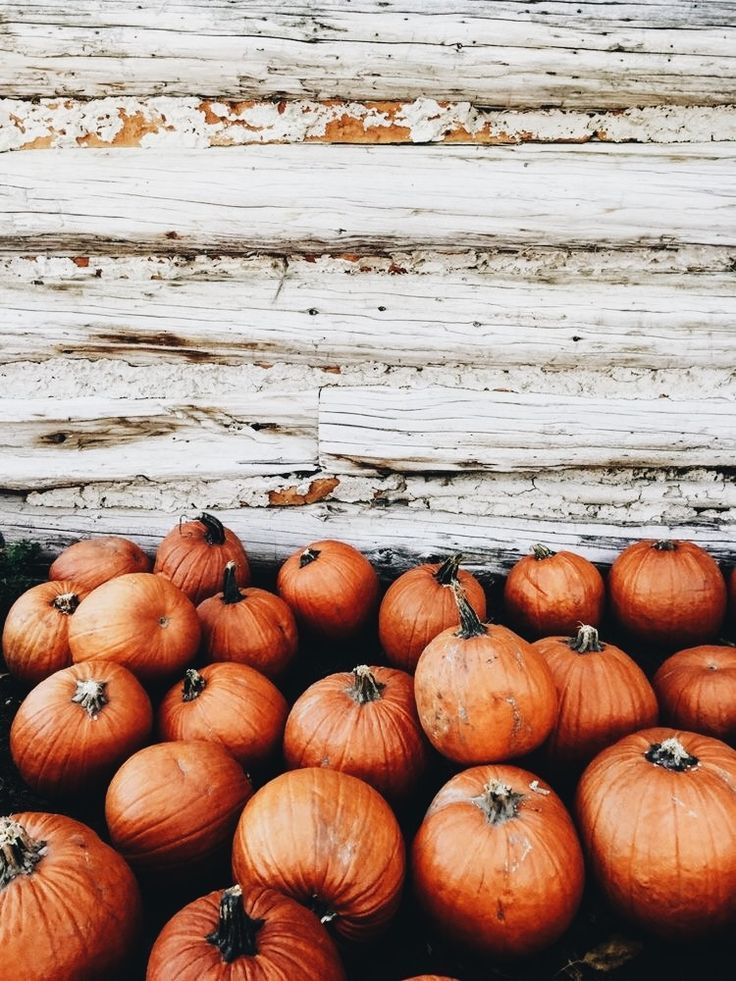 10 Fall Aesthetics To Get You Through The School Day With Images