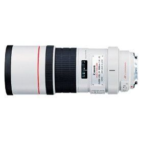 Canon EF 300mm f/4L IS USM Telephoto Lens for Canon SLR Cameras | REVIEW CANON PRODUCTS