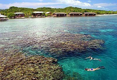 25 best ideas about honduras roatan on pinterest roatan for Roatan dive resort