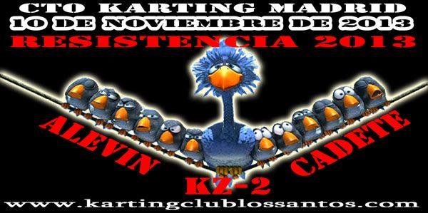 Campeonato de resistencia Karting Madrid 10 Noviembre 2013 en nuestras instalaciones