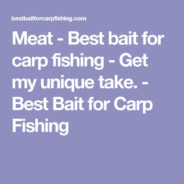 Meat - Best bait for carp fishing - Get my unique take. - Best Bait for Carp Fishing