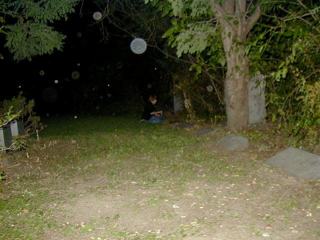 What are these balls of transparent light we find in photos taken in allegedly haunted places?