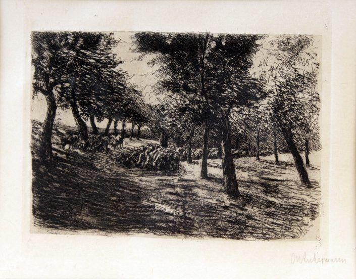 Max Liebermann, Radierung, Schafherde unter Bäumen, 1893