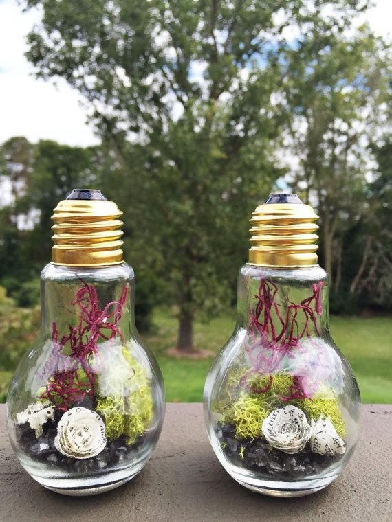 Light bulb terrarium with book page flower and preserved moss kit
