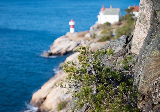 Et annerledes bilde av Odderøya fyr.