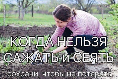 """КОГДА НЕЛЬЗЯ САЖАТЬ и СЕЯТЬ Народные приметы для садоводов-огородников! - Картофель нельзя сажать на Вербной неделе, по средам и субботам - будет портиться. - Если весна ранняя, то капусту, как и лук сеют на четвертой неделе Великого поста или позже - на пятой. - Если весна запаздывает, то производят посев в %‰•""""¥ˆh…"""