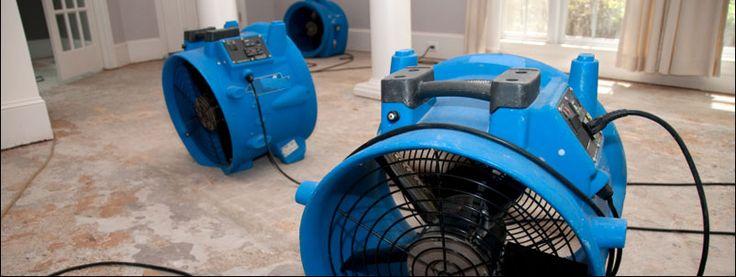 Disaster Restoration Inc #disaster #restoration #inc., #fire #damage #restoration, #removing #mold, #remove #mold, #fire #restoration, #mold #cleaning, #flood #restoration, #water #damage #repair, #water #repair, #mold #mildew. http://nashville.remmont.com/disaster-restoration-inc-disaster-restoration-inc-fire-damage-restoration-removing-mold-remove-mold-fire-restoration-mold-cleaning-flood-restoration-water-damage-repair-wa/  # Disaster Restoration Inc. Fire Water Damage Restoration…