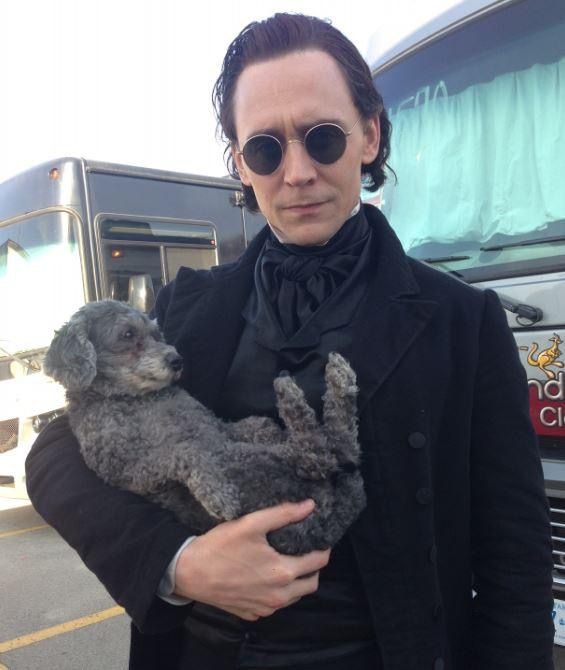 "Tom Hiddleston on the set of ""Crimson Peak"" 2015 ""Our make-up designer Jordan Samuel's dog Charlie, our mascot for the film."" From http://larygo.tumblr.com/post/130342024546/our-make-up-designer-jordan-samuels-dog-charlie"