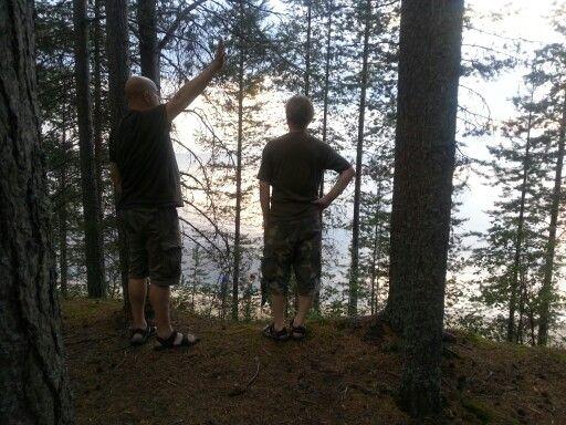 #metsä #forest #järvi #lake #sjö #kesä #men