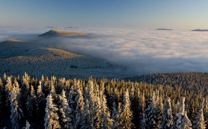 Výsledek obrázku pro šumava winter night