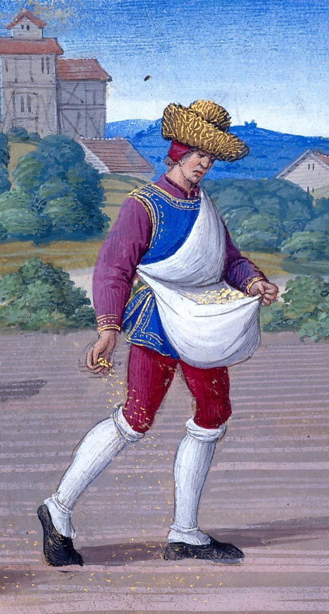 Man sows the field with grain he holds in his apron |  October: Sowing and Ploughing | Hours of Henry VIII, in Latin | Illuminated by Jean Poyer | France, Tours | ca. 1500 | The Morgan Library & Museum