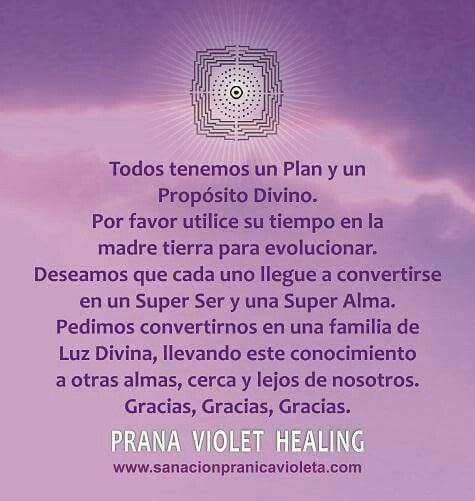 De Sanacion Pranica Violeta Barcelona