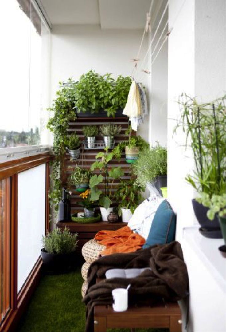 Turn your small balcony into a green corner by adding a vertical garden and  grass carpet