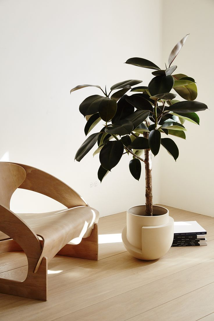 Modern chair and planters