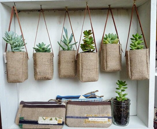 Succulents in hessian bags