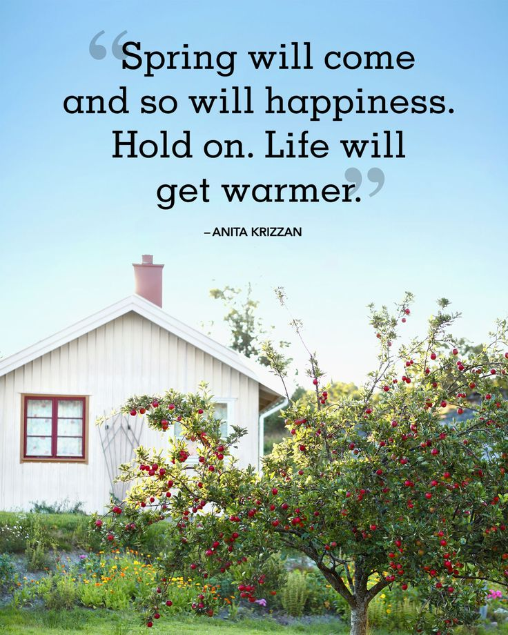20 Beautiful Spring Quotes That Will Make You Smile