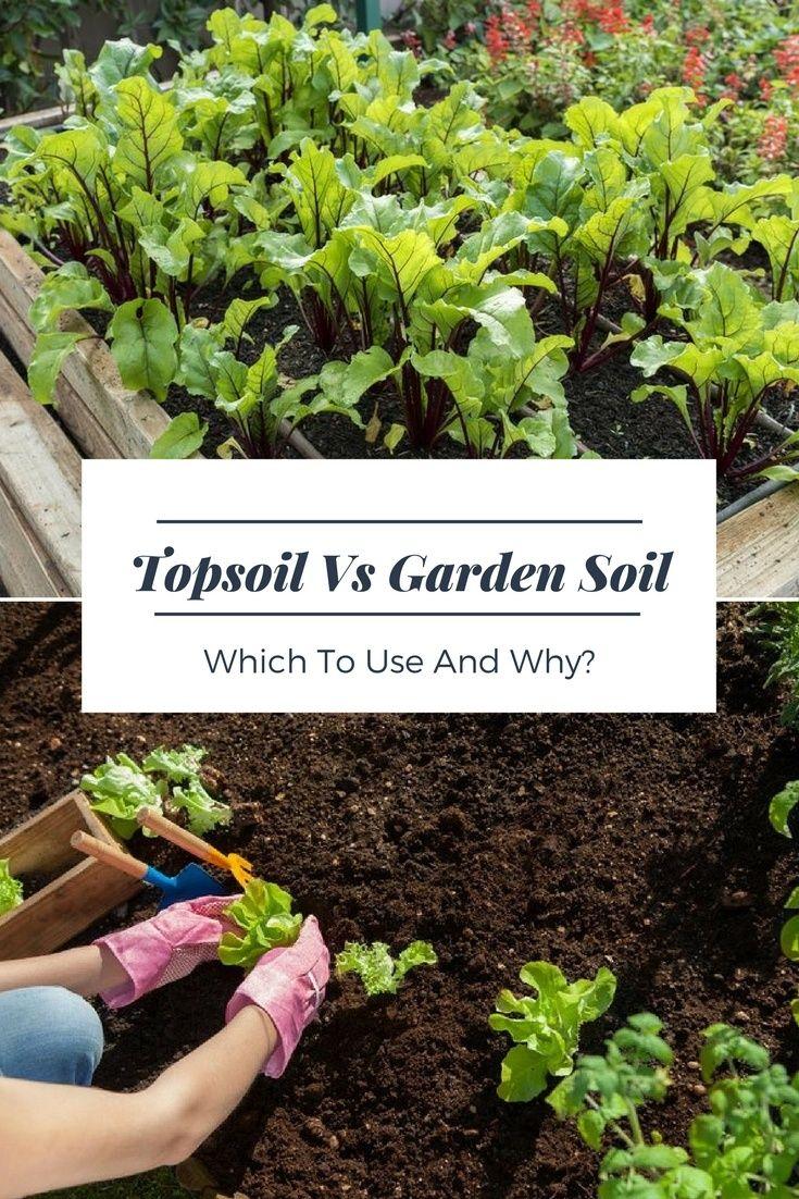 Topsoil Versus Garden Soil Which To Use And Why Top Soil Garden Soil Organic Gardening Tips