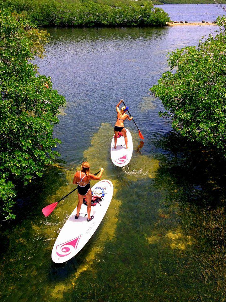 Paddle Board Canoe Kayak Rentals | Pennekamp Coral Reef State Park