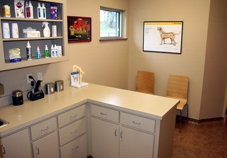 222 best images about building a vet practice exam rooms