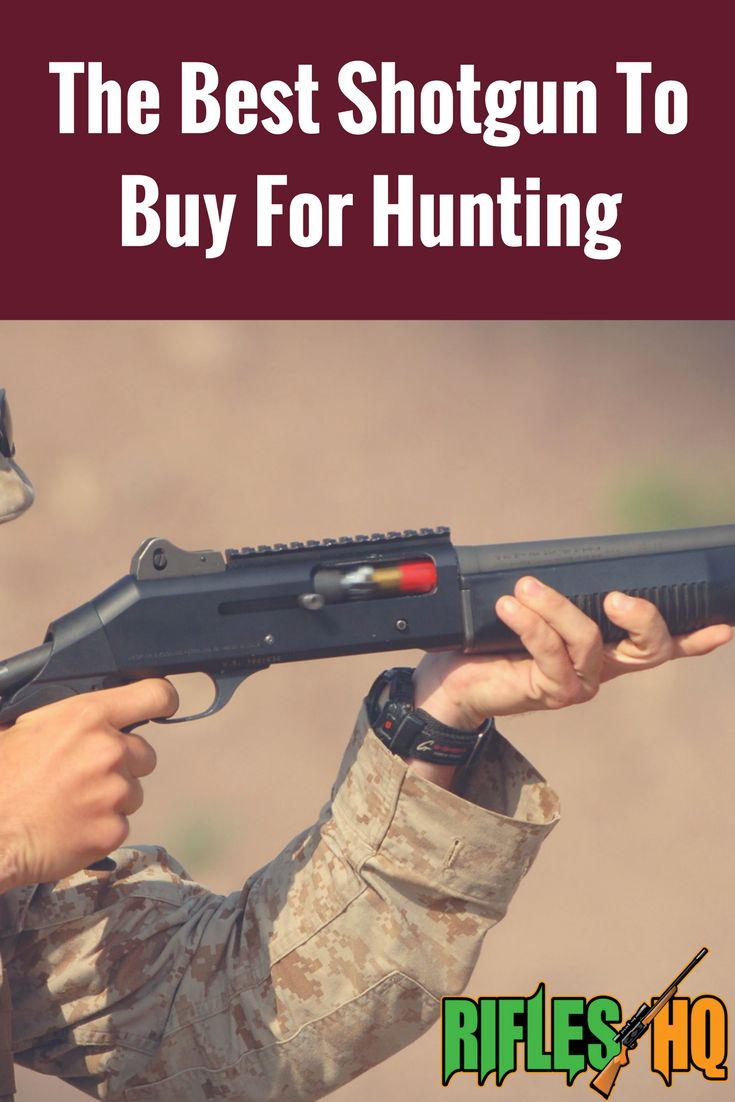 Best Shotgun To Buy For Hunting shotgun shell crafts | shotgun shell boutonniere | shotgun house | shotgun house plans | shotgun shell wreath | hunting | hunting quotes | Hunting, Fishing and the Great Outdoors shooting star costume | shooting star tattoo | shooting star | shooting range outfit | shooting gender reveal | rifles | rifles or ruffles gender reveal |