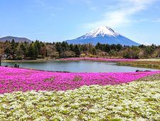 japan-guide.com forum - Trip Reports - A Day Trip to Ito and Izu Kogen - Izu Peninsula